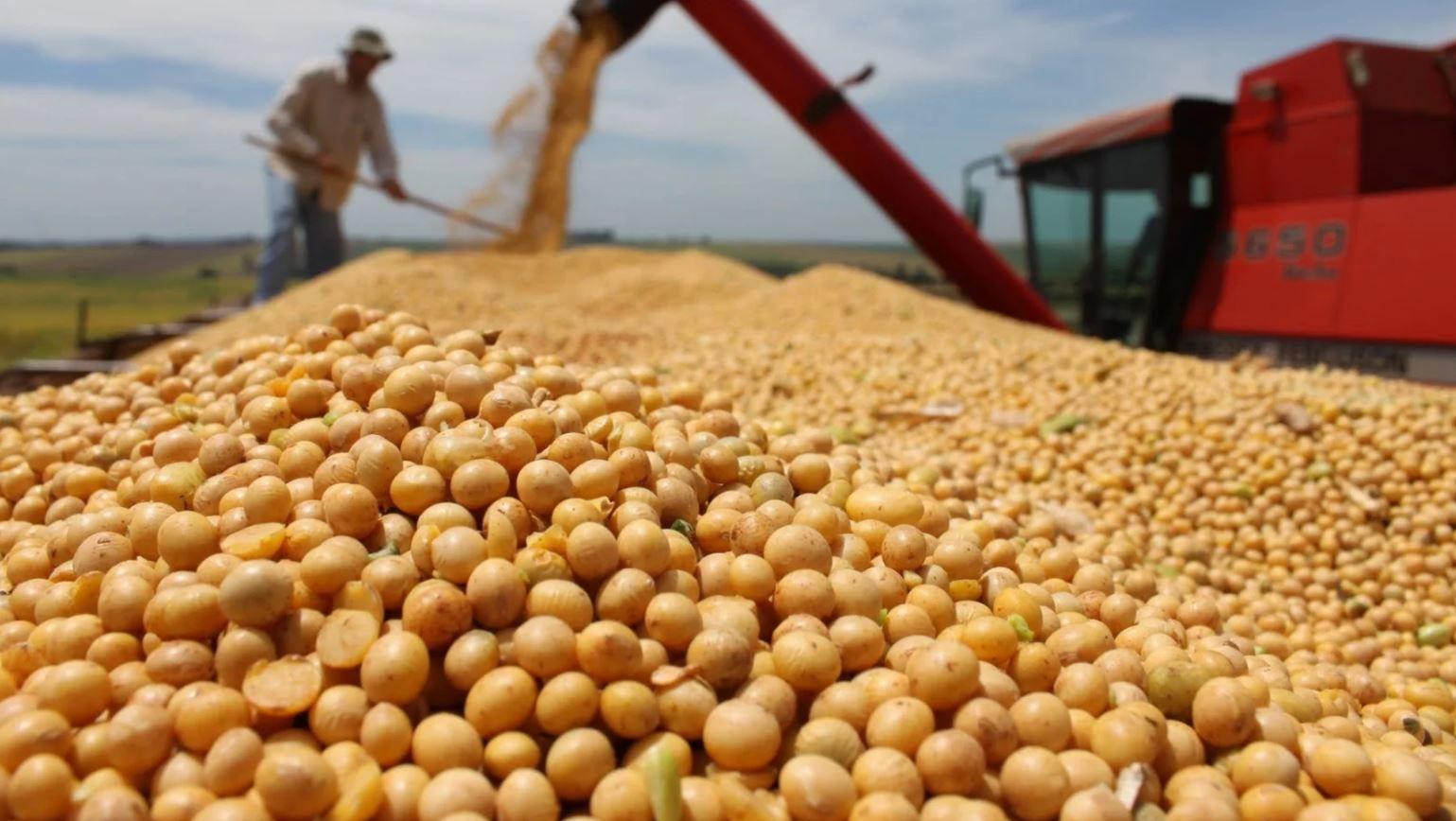 La suba de la soja y el maíz podrían generar US$ 10.000 millones extra en exportaciones