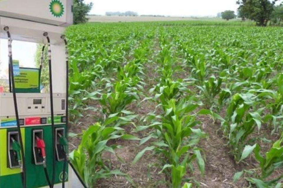 Malestar de la Cámara Panamericana de Biocombustibles Avanzados